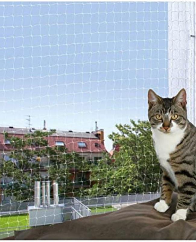 Red protección gato 3x2 transparente