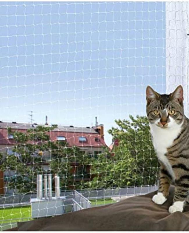 Red protección gato 4x3m. transparente