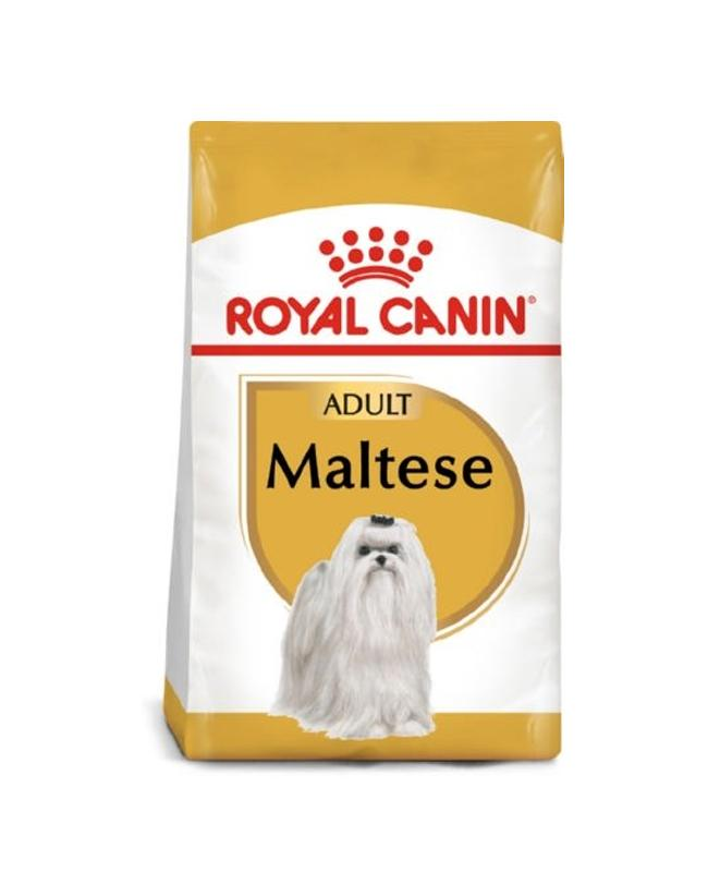 Royal canin bichon maltes adult 500gr